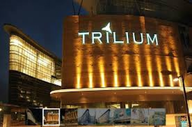 Trilium_1.jpg