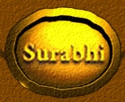 Surabhi-Living-Heritage-Private-Limited.jpg